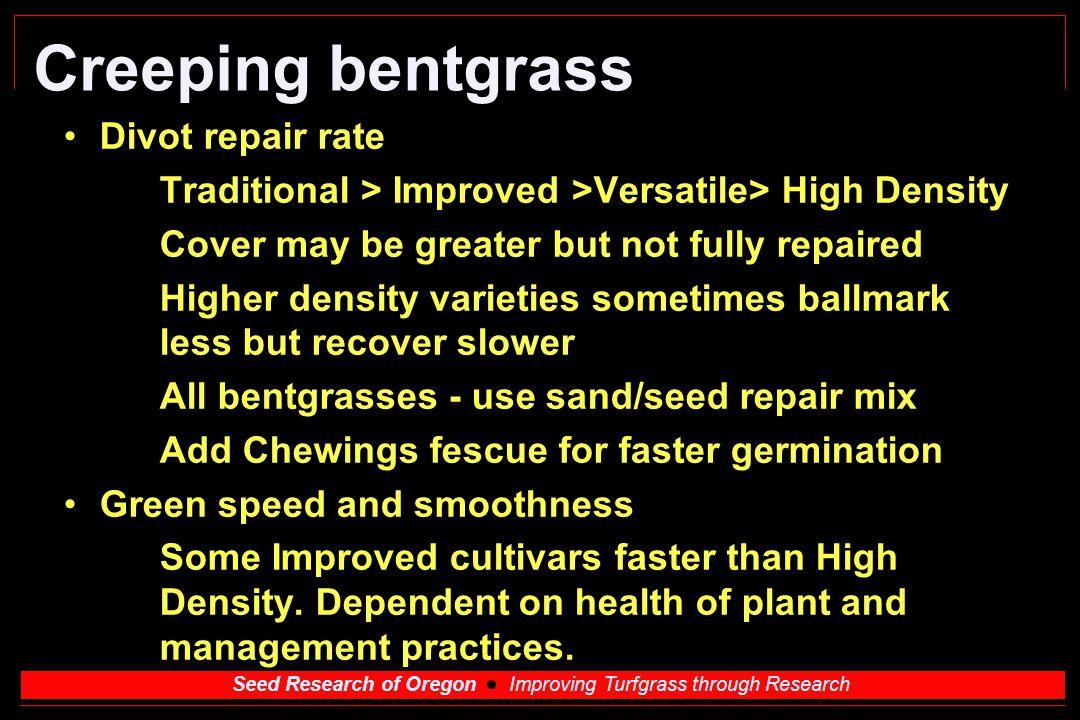 Creeping bentgrass l Divot repair rate