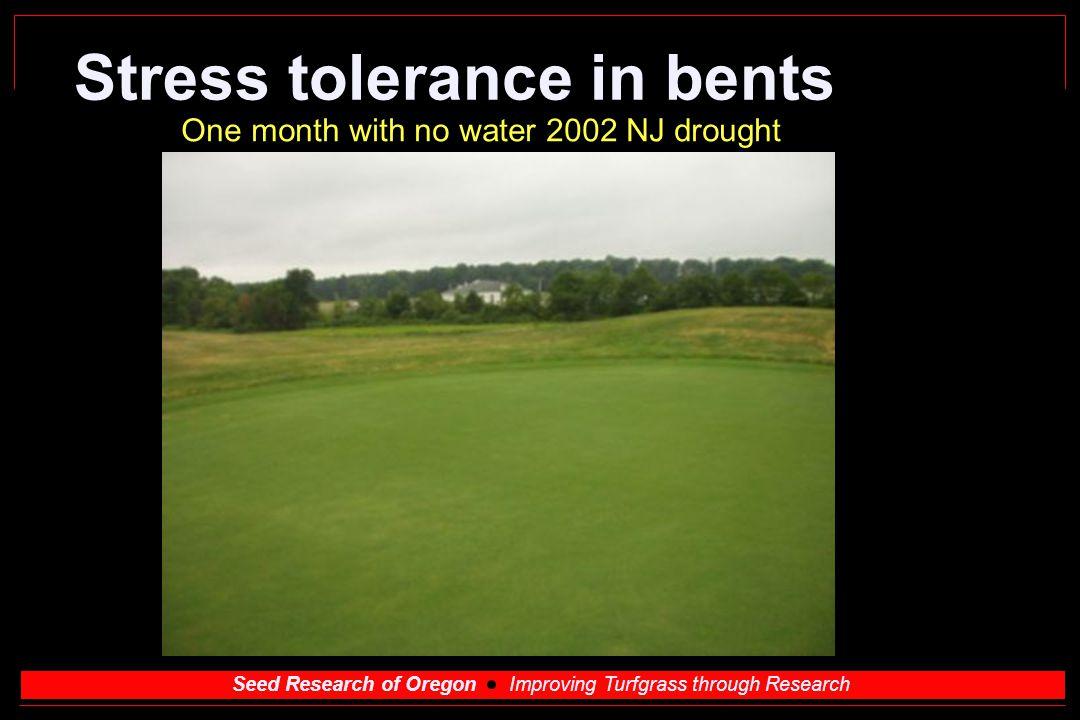 Stress tolerance in bents