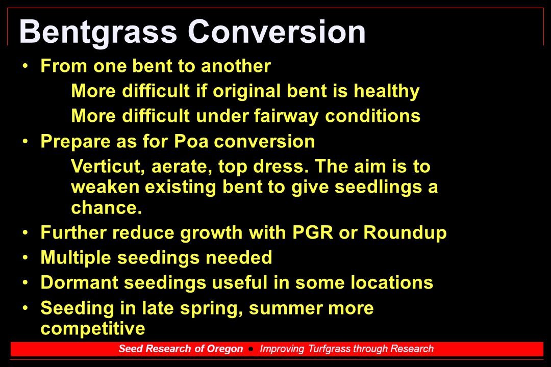 Bentgrass Conversion From one bent to another