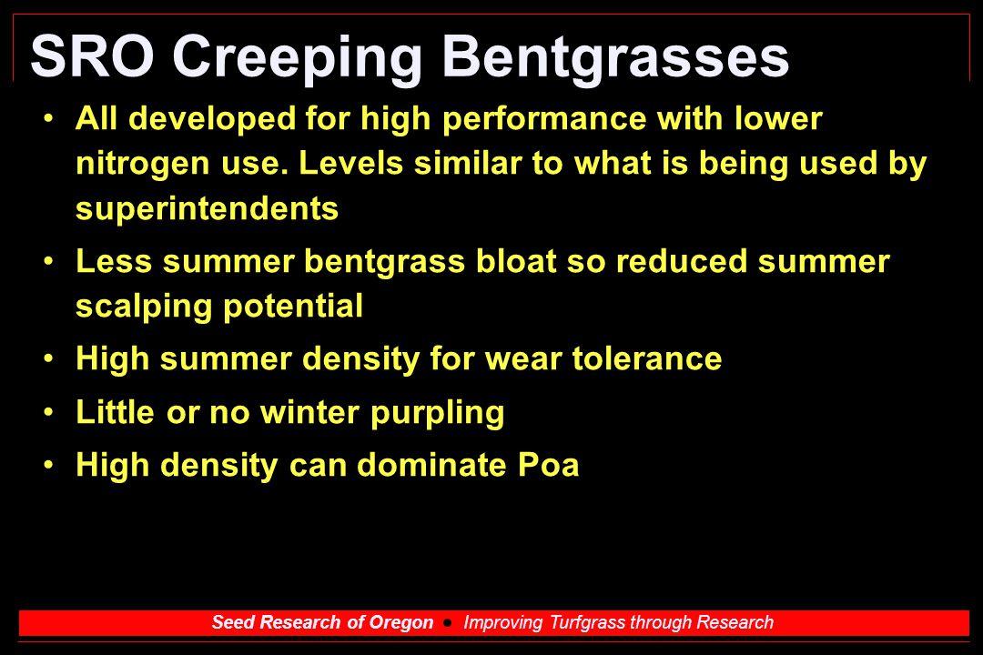 SRO Creeping Bentgrasses
