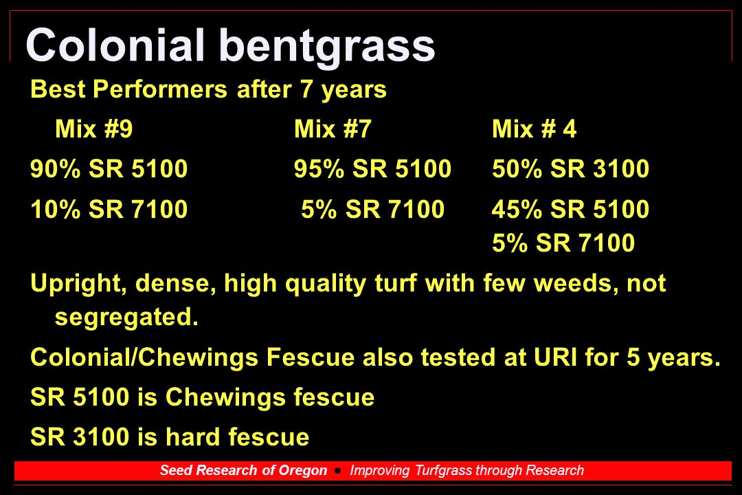 Colonial bentgrass Best Performers after 7 years Mix #9 Mix #7 Mix # 4
