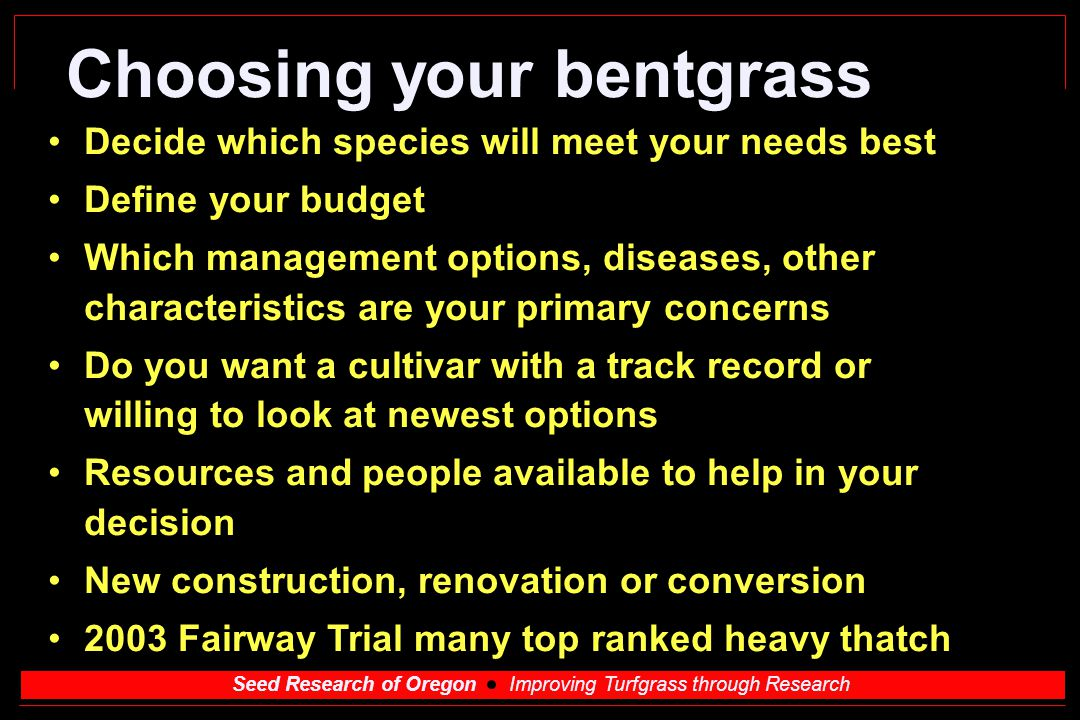 Choosing your bentgrass