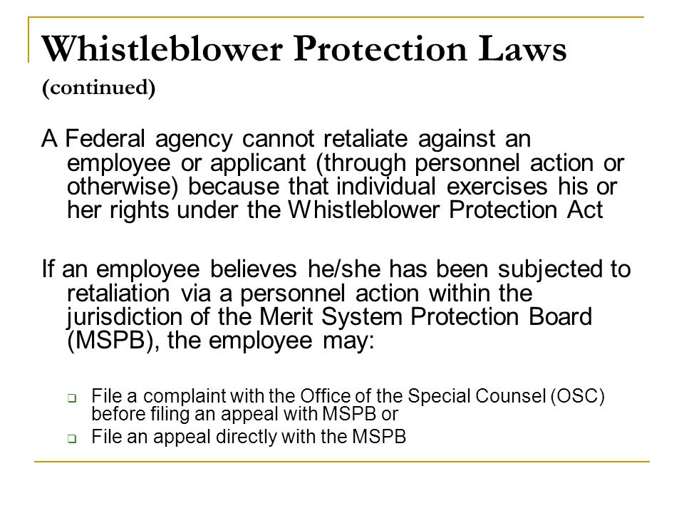 Whistleblower Protection Laws (continued)