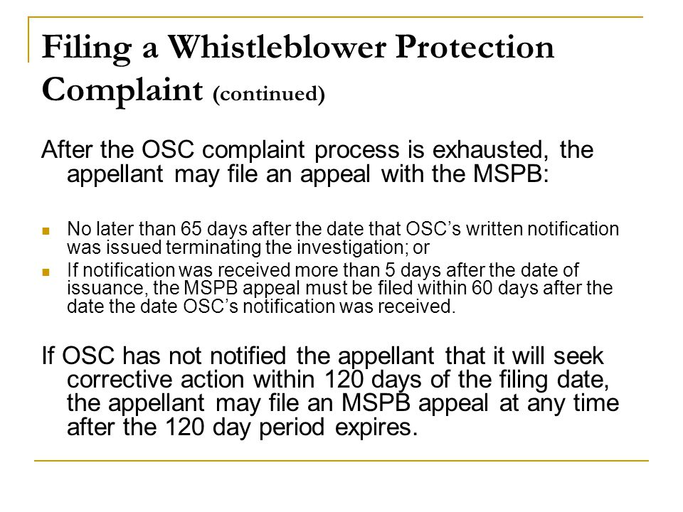 Filing a Whistleblower Protection Complaint (continued)