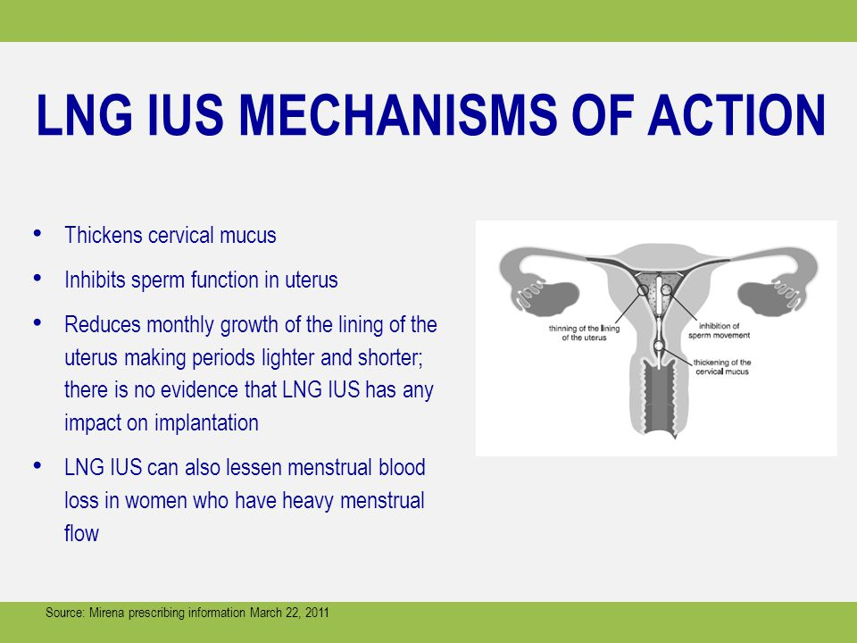 LNG IUS MECHANISMS OF ACTION
