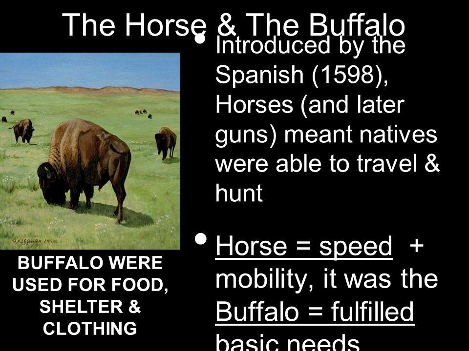 BUFFALO WERE USED FOR FOOD, SHELTER & CLOTHING
