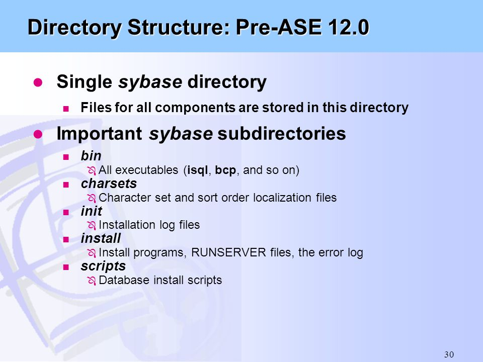 Directory Structure: Pre-ASE 12.0