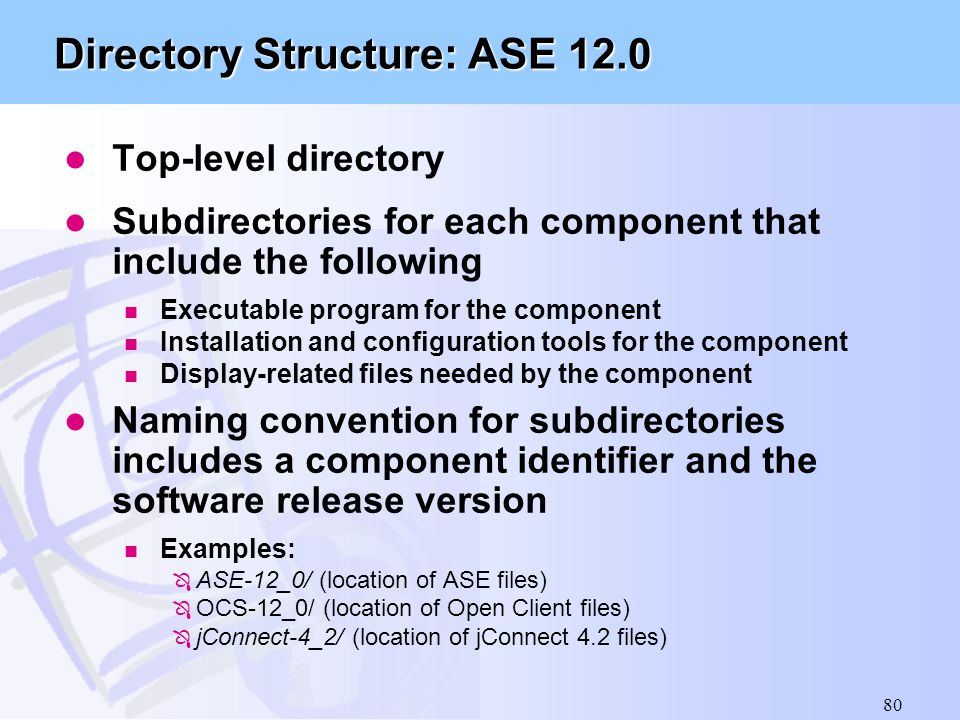 Directory Structure: ASE 12.0
