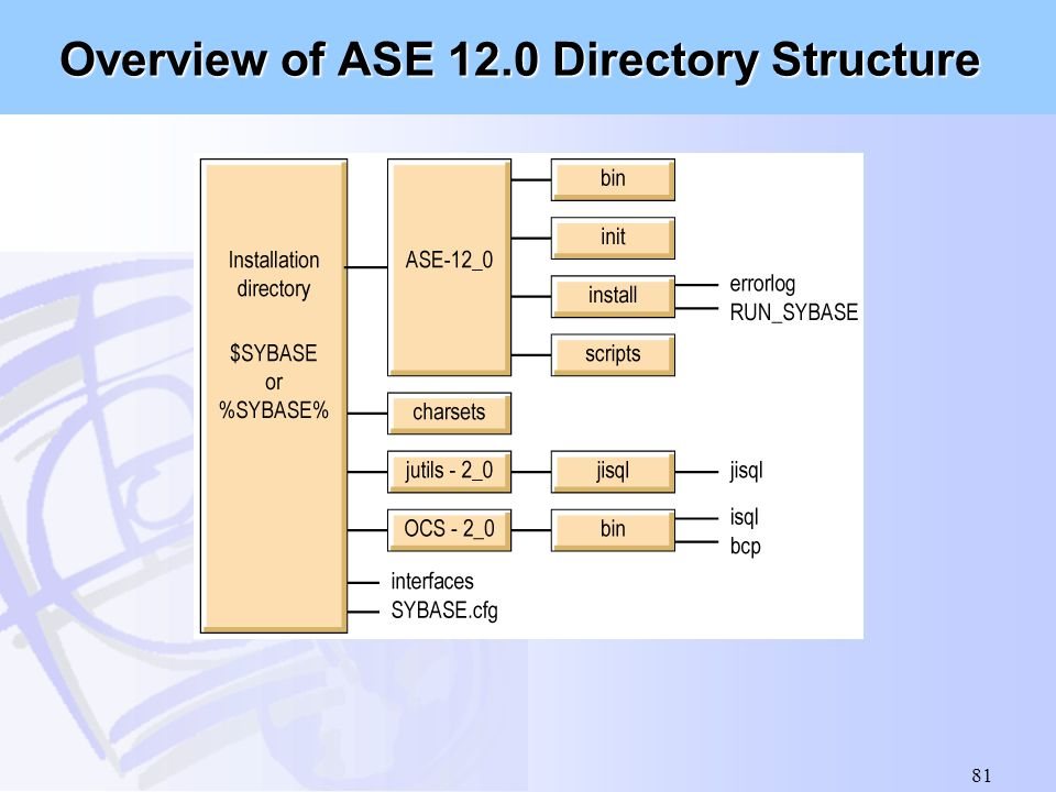 Overview of ASE 12.0 Directory Structure