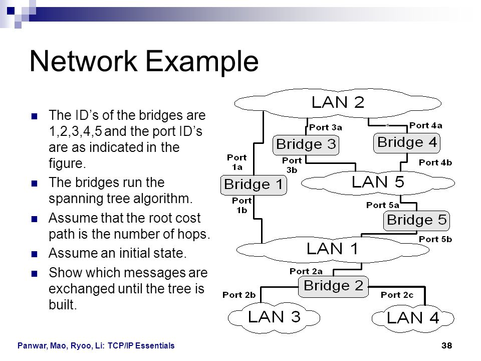 Network Example The ID's of the bridges are 1,2,3,4,5 and the port ID's are as indicated in the figure.