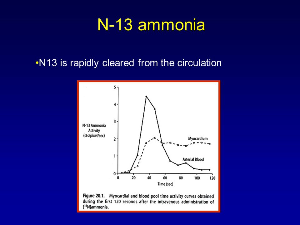 N-13 ammonia •N13 is rapidly cleared from the circulation