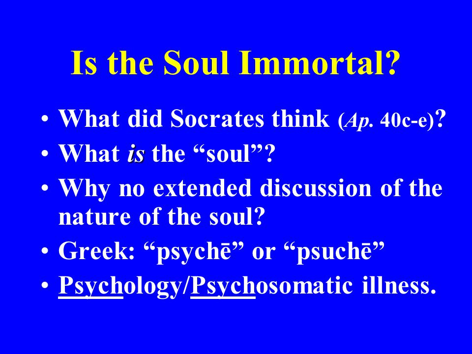 Is the Soul Immortal What did Socrates think (Ap. 40c-e)
