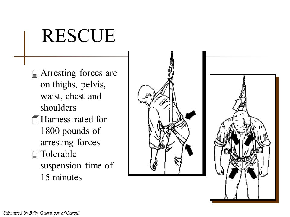 RESCUE Arresting forces are on thighs, pelvis, waist, chest and shoulders. Harness rated for 1800 pounds of arresting forces.
