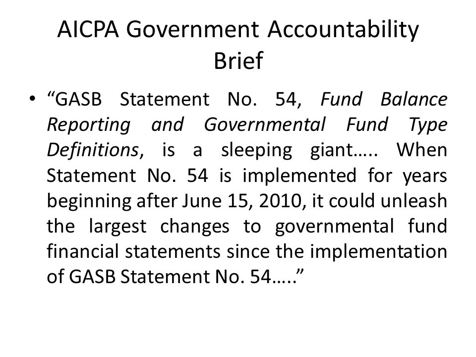 AICPA Government Accountability Brief