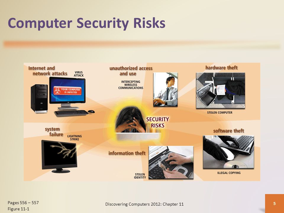 Computer Security Risks