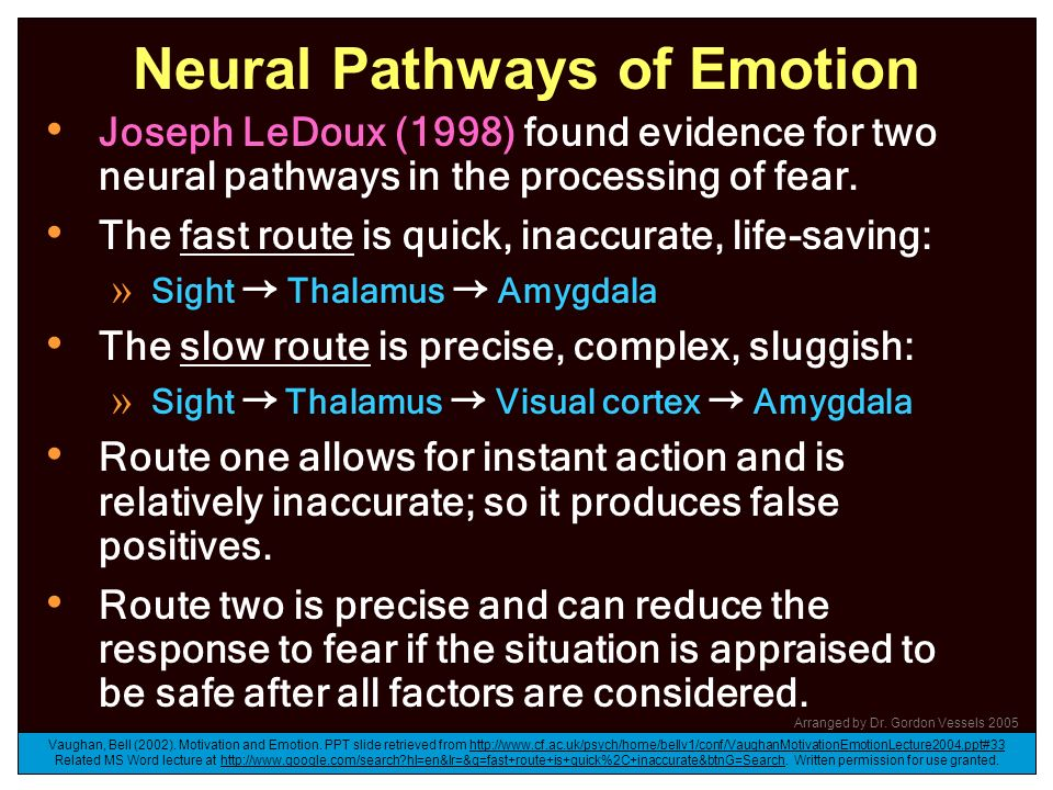 Neural Pathways of Emotion