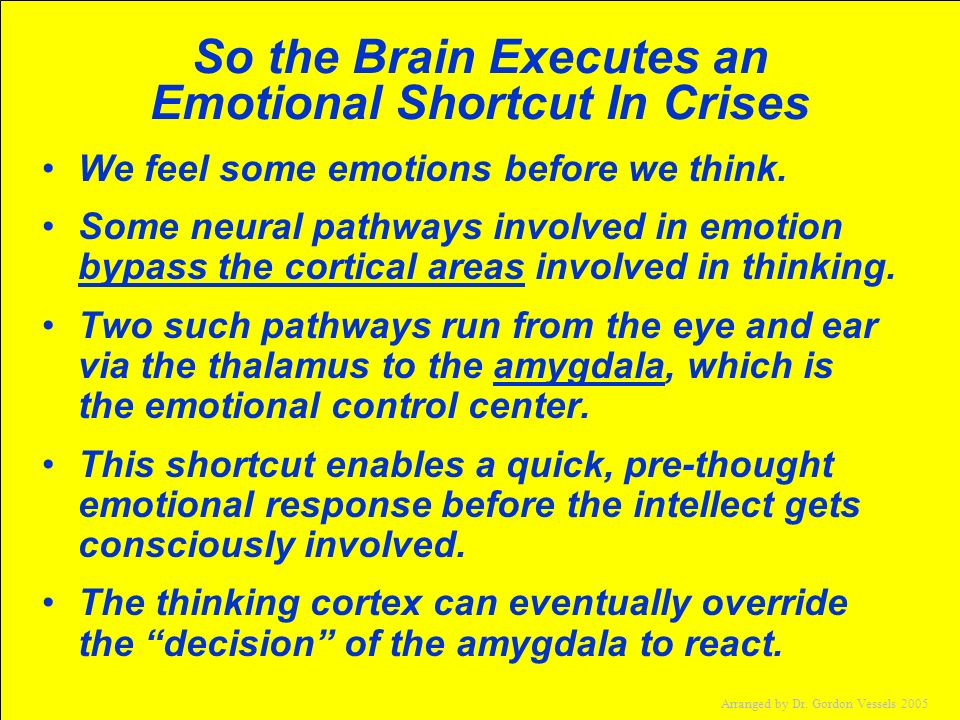 So the Brain Executes an Emotional Shortcut In Crises