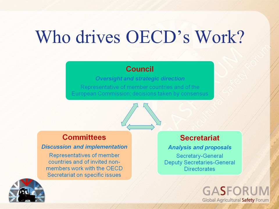 Who drives OECD's Work The Council