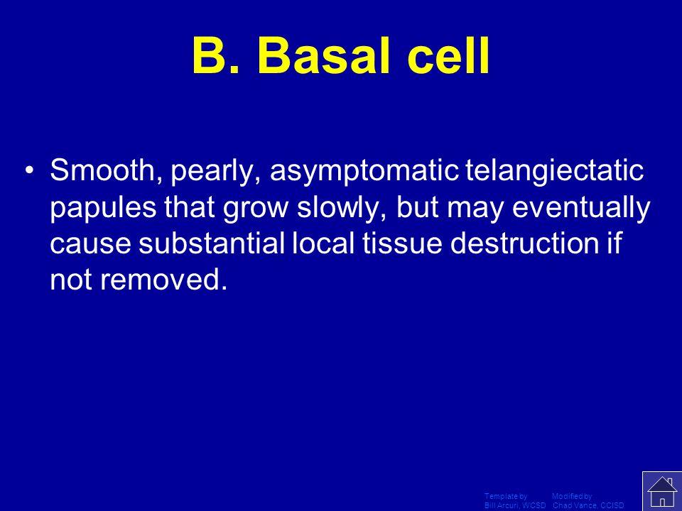 B. Basal cell