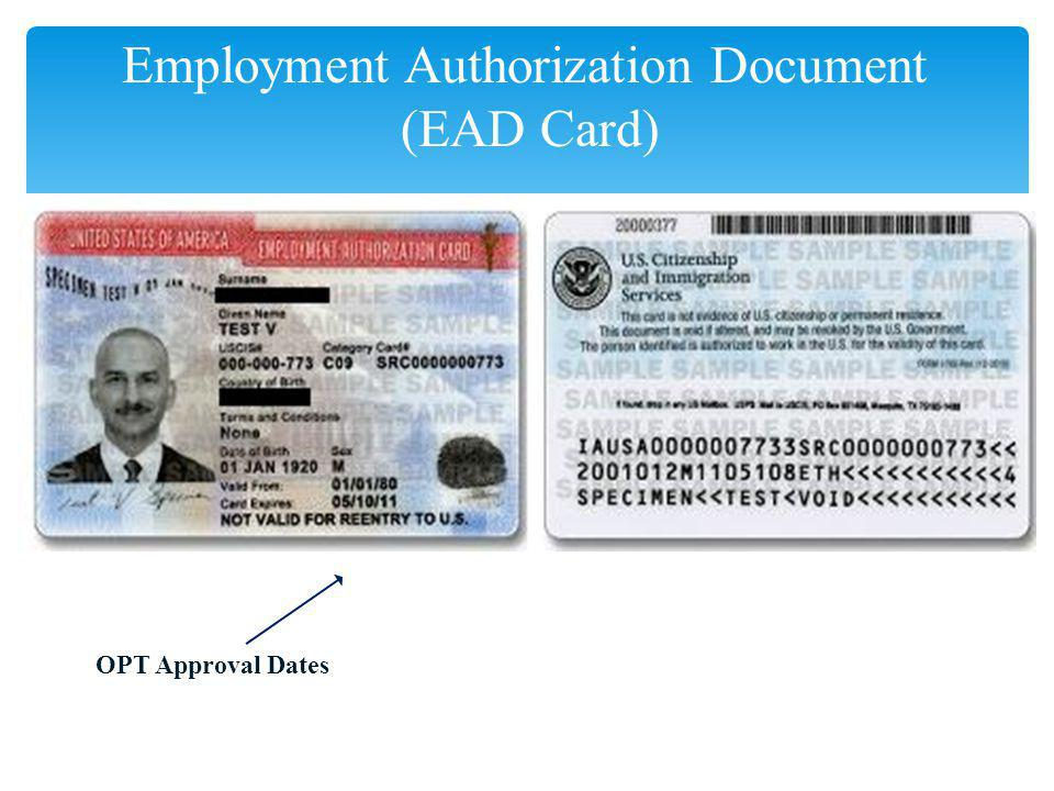 Employment Authorization Document (EAD Card)