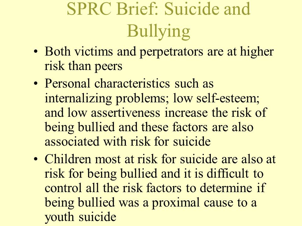 SPRC Brief: Suicide and Bullying