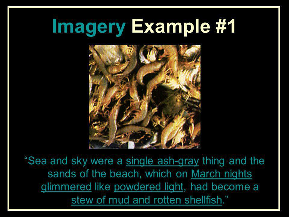 Imagery Example #1
