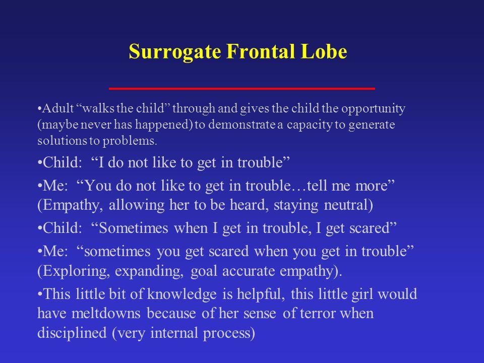 Surrogate Frontal Lobe
