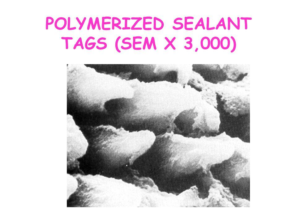 POLYMERIZED SEALANT TAGS (SEM X 3,000)