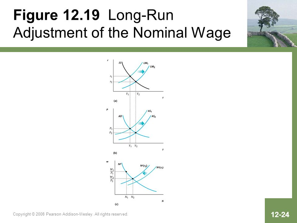 Figure 12.19 Long-Run Adjustment of the Nominal Wage