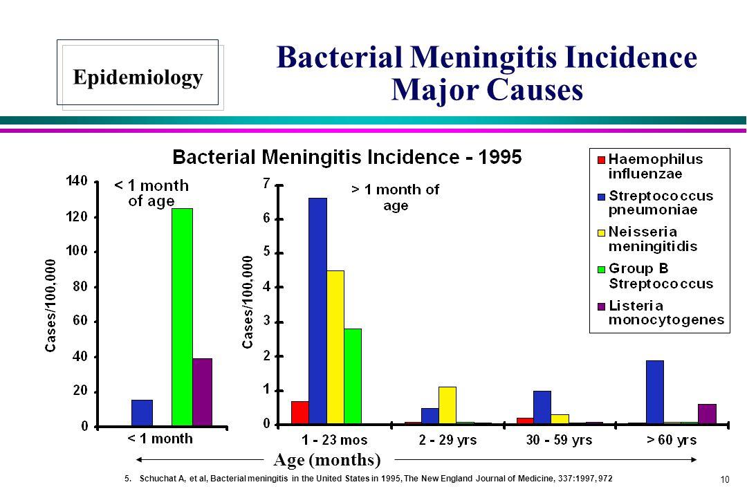 Bacterial Meningitis Incidence Major Causes