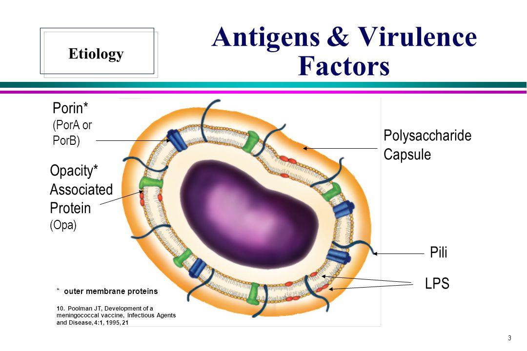 Antigens & Virulence Factors