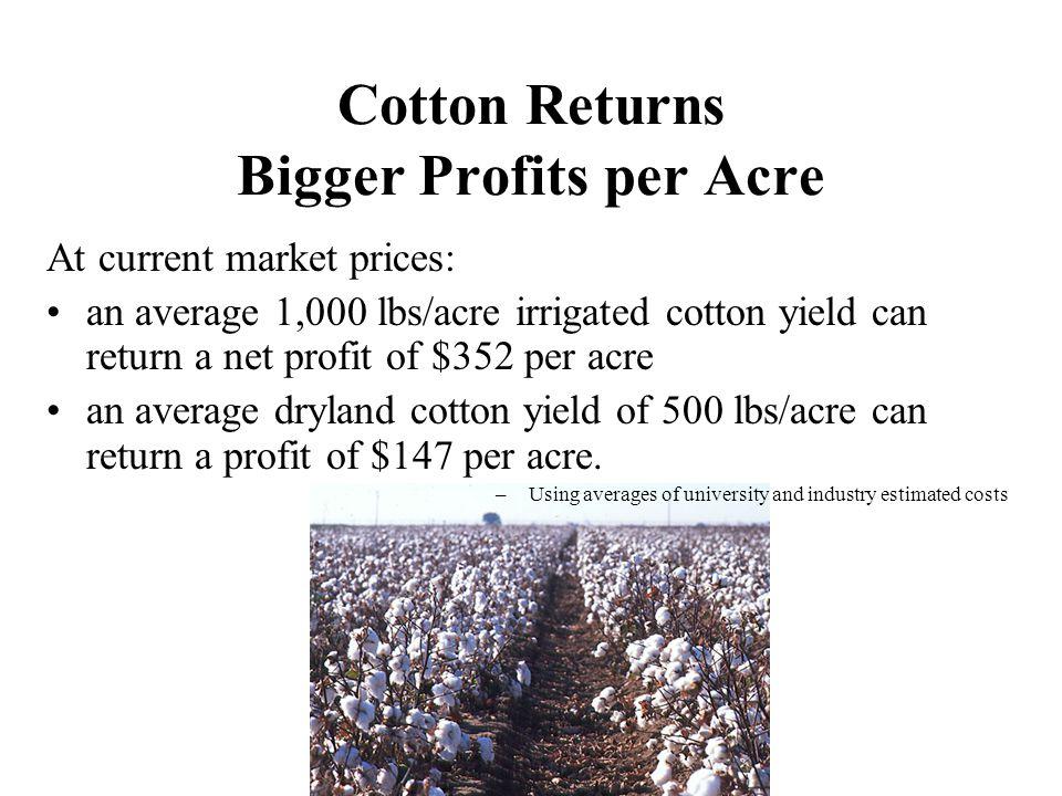 Cotton Returns Bigger Profits per Acre