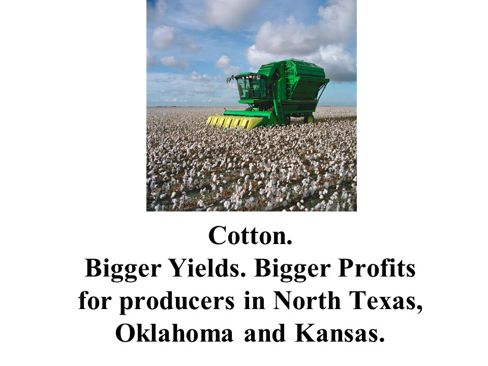 Cotton. Bigger Yields. Bigger Profits for producers in North Texas, Oklahoma and Kansas.
