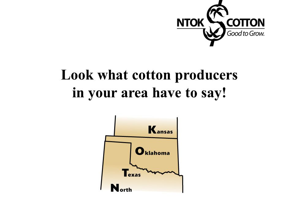 Look what cotton producers