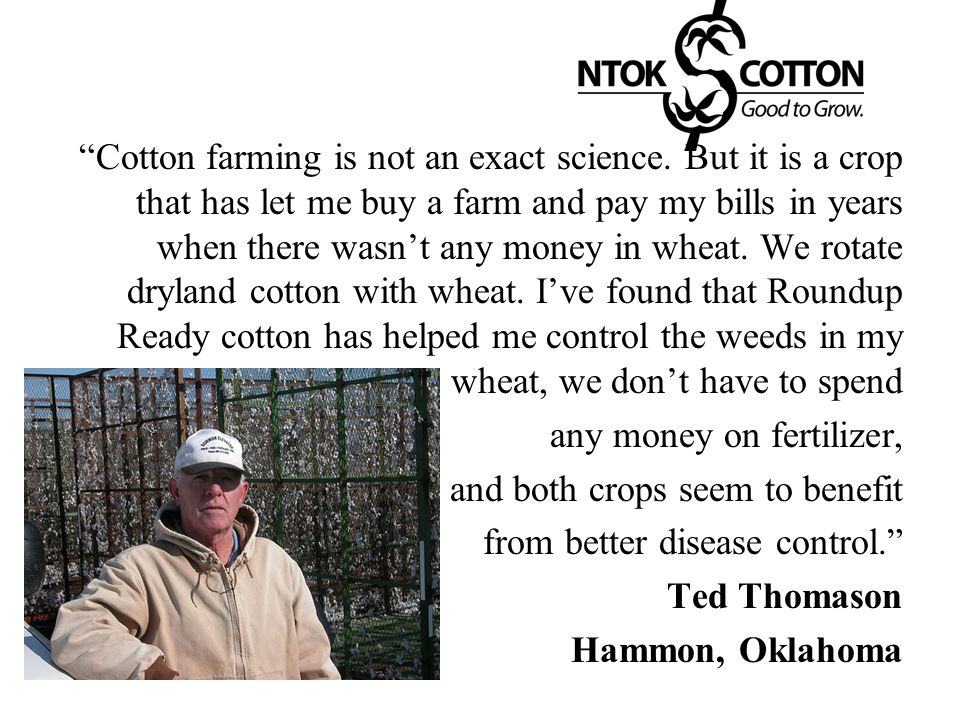 Cotton farming is not an exact science