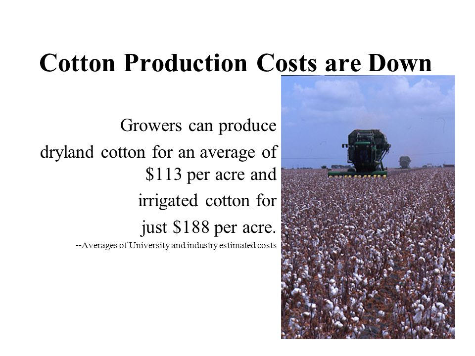 Cotton Production Costs are Down