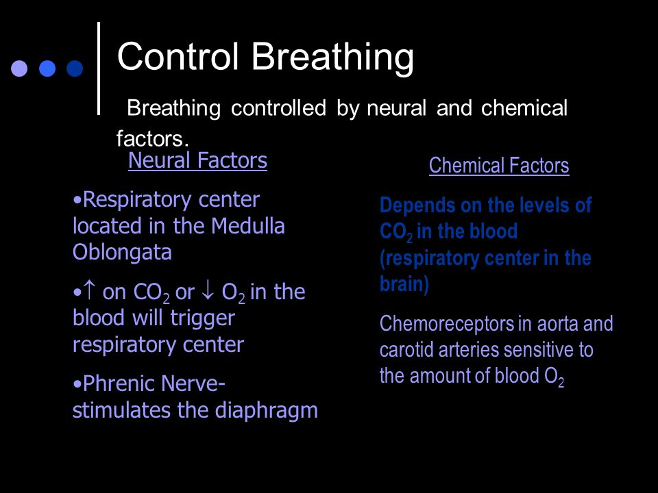 Control Breathing Breathing controlled by neural and chemical factors.