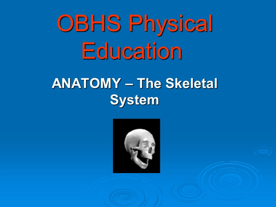 OBHS Physical Education