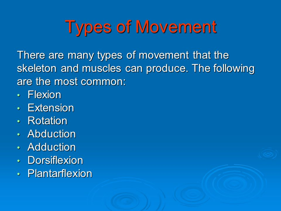Types of Movement There are many types of movement that the