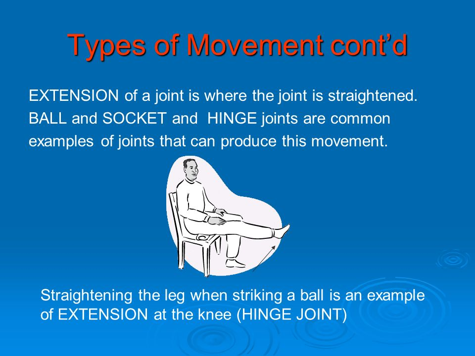 Types of Movement cont'd