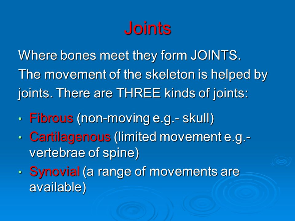 Joints Where bones meet they form JOINTS.