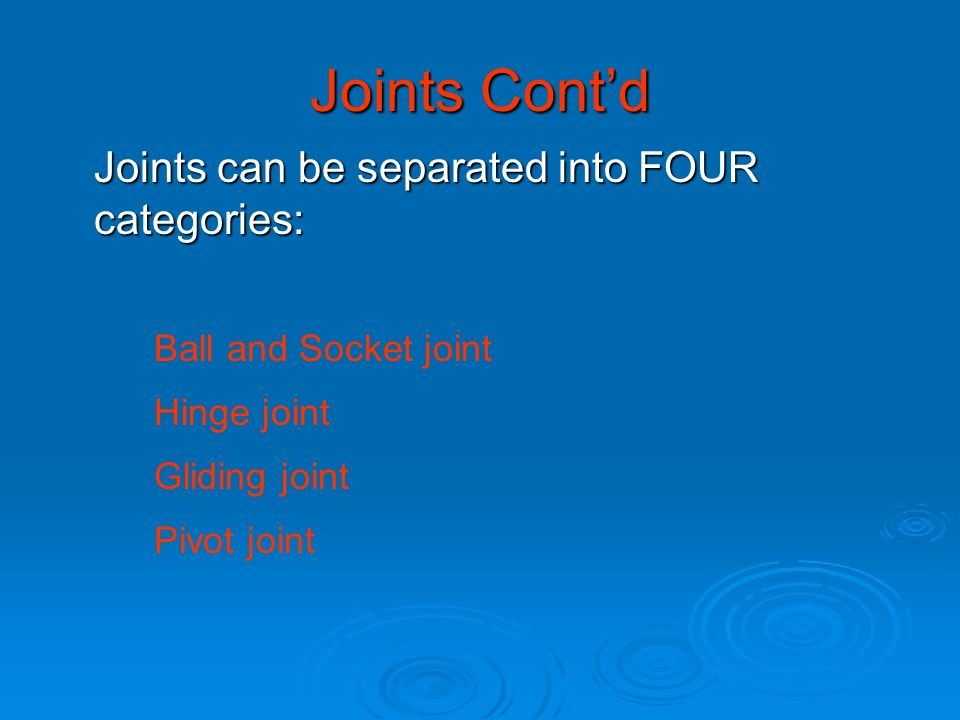 Joints Cont'd Joints can be separated into FOUR categories: