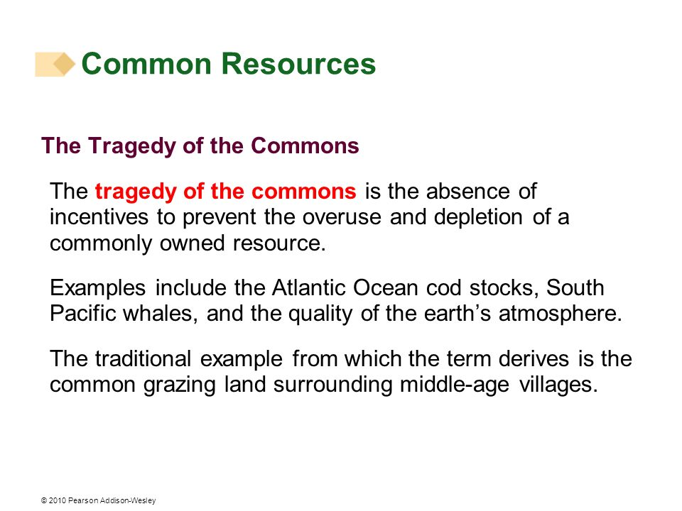 Common Resources The Tragedy of the Commons