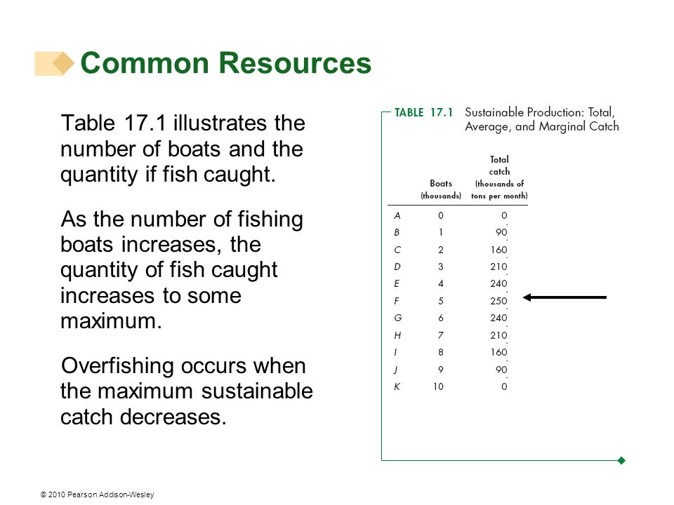 Common Resources Table 17.1 illustrates the number of boats and the quantity if fish caught.