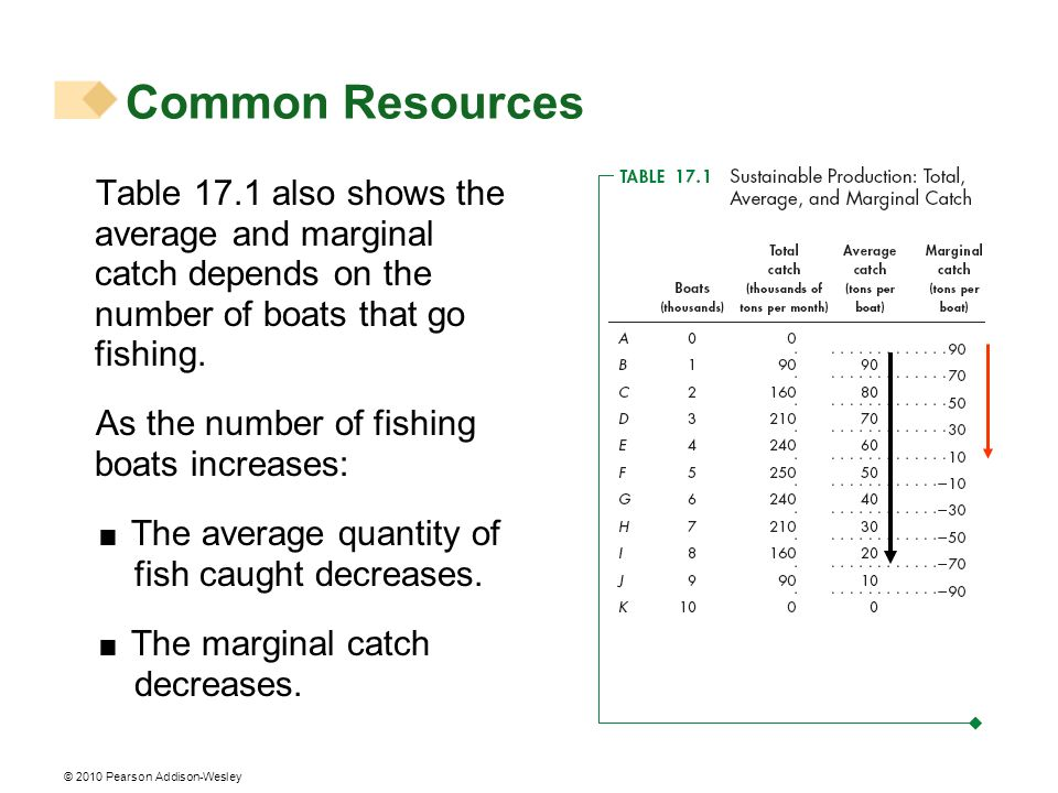 Common Resources Table 17.1 also shows the average and marginal catch depends on the number of boats that go fishing.