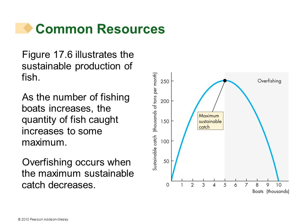 Common Resources Figure 17.6 illustrates the sustainable production of fish.
