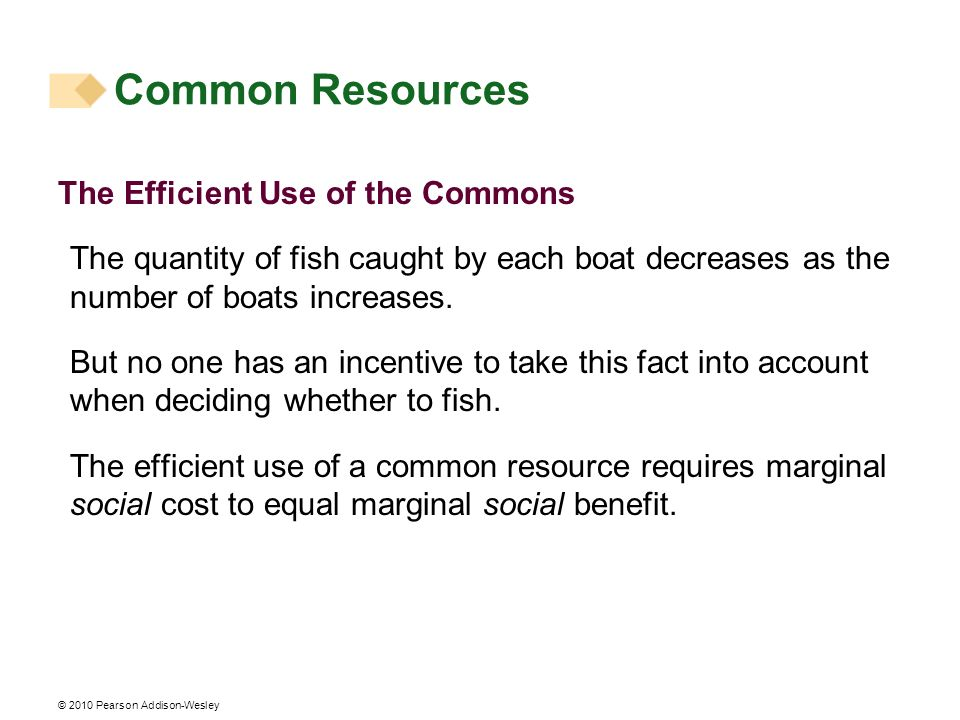Common Resources The Efficient Use of the Commons