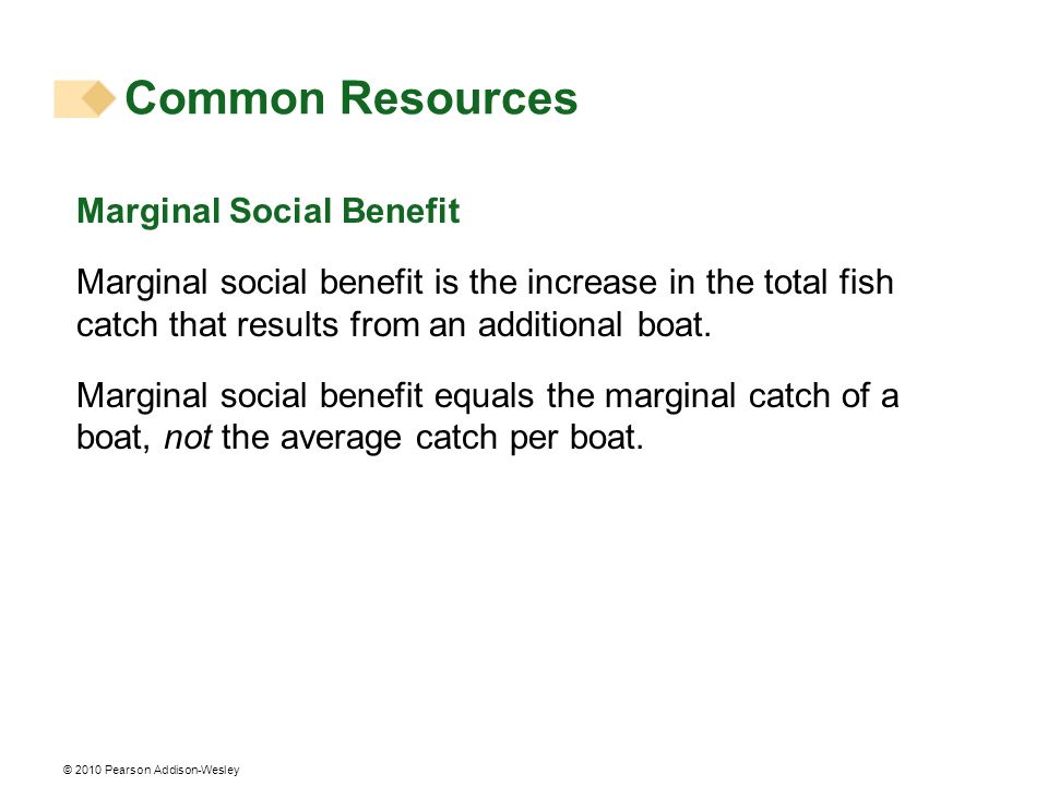 Common Resources Marginal Social Benefit