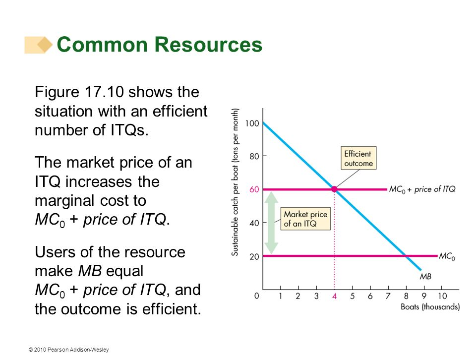 Common Resources Figure 17.10 shows the situation with an efficient number of ITQs.