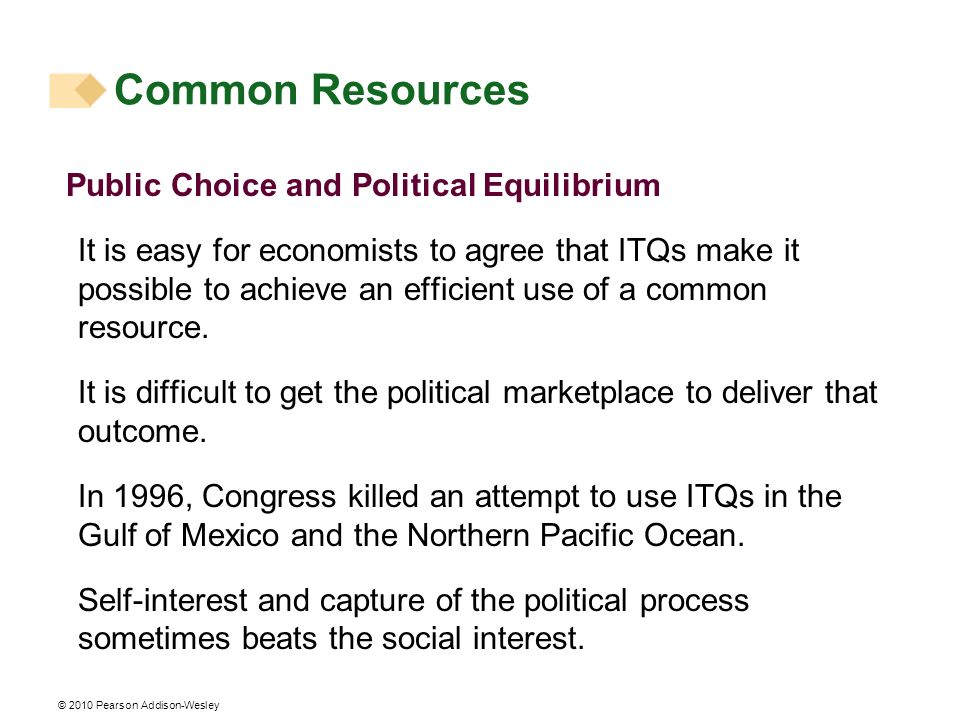 Common Resources Public Choice and Political Equilibrium